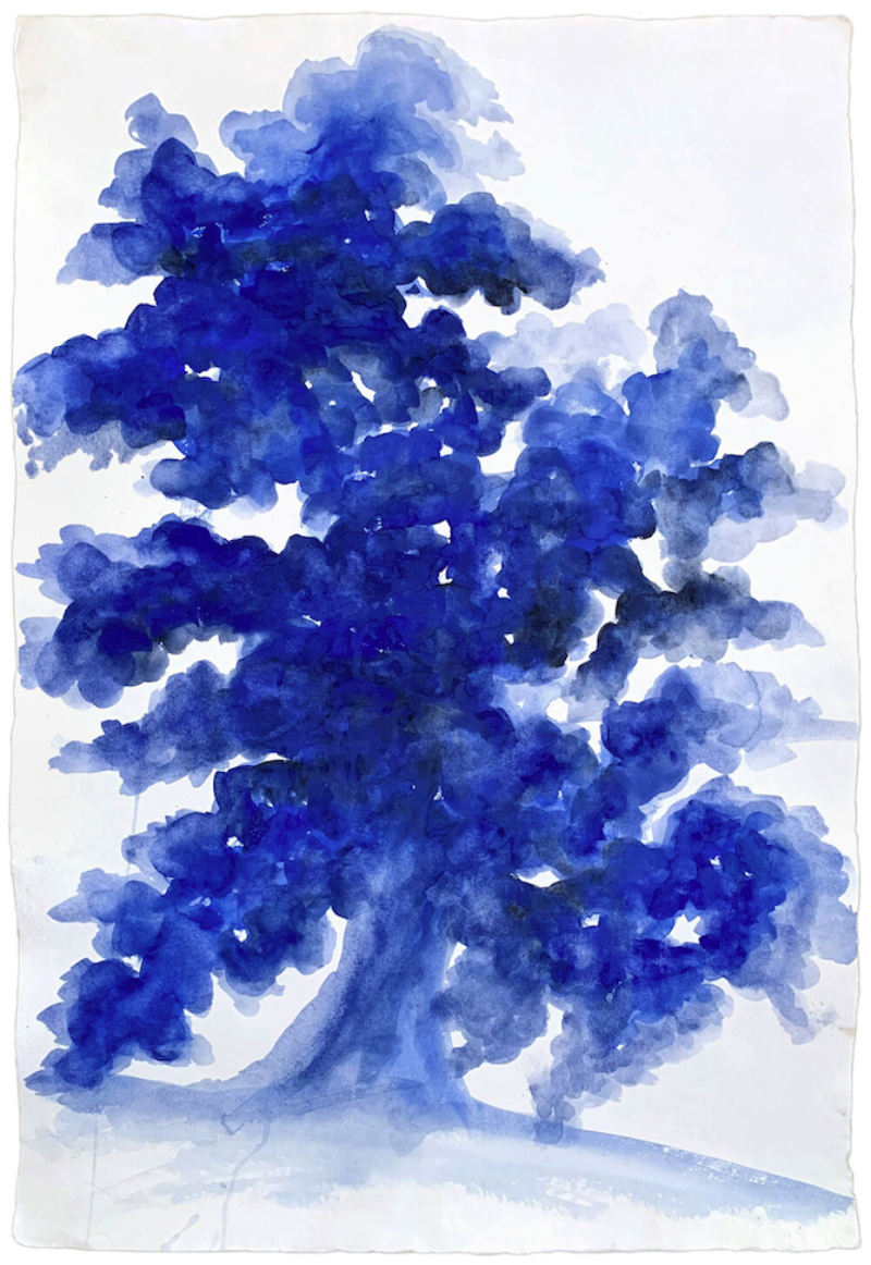 Jessica Dessner, Tree 6, 2020, watercolor on paper, 39.5 x 27.5 inches